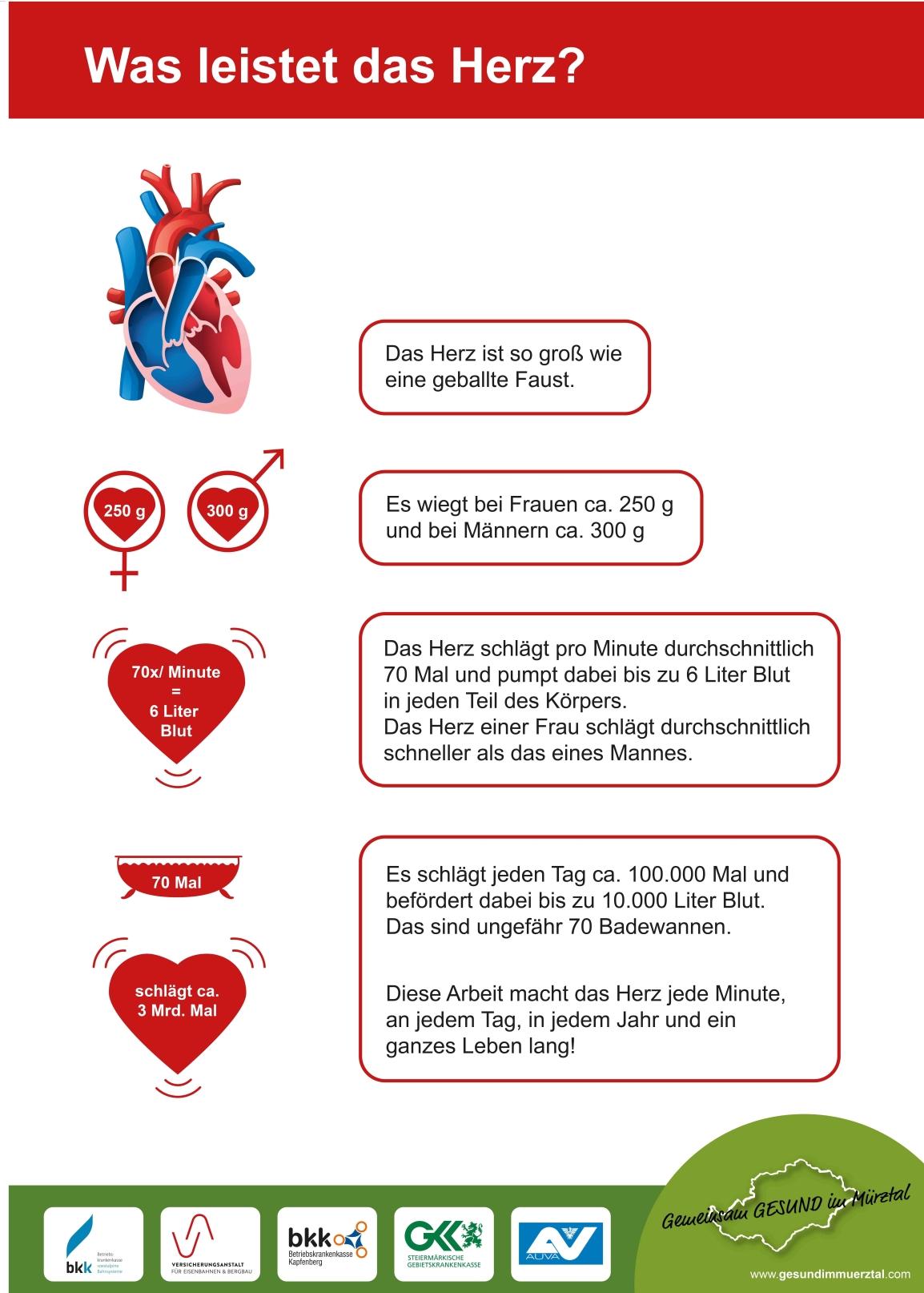 Herzleistung – Genusstag Kapfenberg – Gemeinsam GESUND im Mürztal